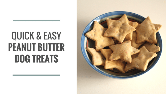 Quick & Easy Peanut Butter Dog Treats